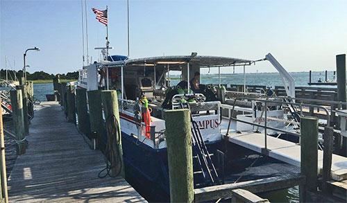 Dive boat business plan